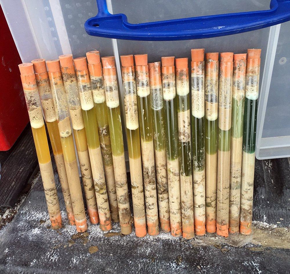 Soil sampling test tubes.